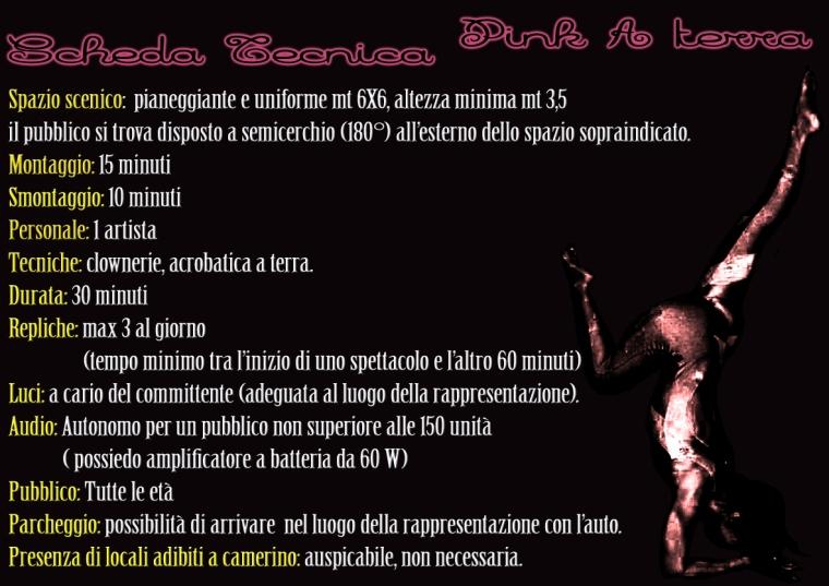 dossier pinkmari 016 p6 leg