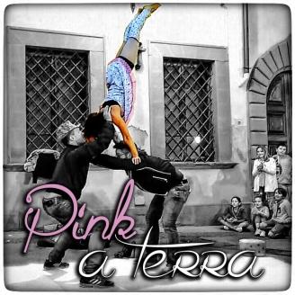 pink a terra menu copia