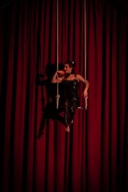 giornata mondiale del circo
